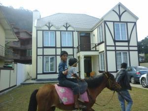 Villa Cassandra, Penzióny  Nuwara Eliya - big - 31