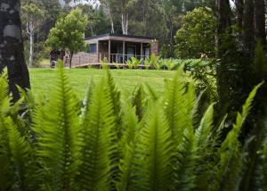 Tyenna River Cottage