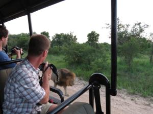 Honeyguide Tented Safari Camps, Campeggi di lusso  Manyeleti Game Reserve - big - 22