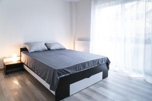 Hermann Apartments, Apartmanok  Nagyszeben - big - 17