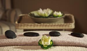 White Lotus Day Spa, Курортные отели  Narbethong - big - 24