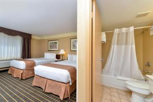 Suite met 2 Tweepersoonsbedden met Uitzicht op het Zwembad - Rookvrij