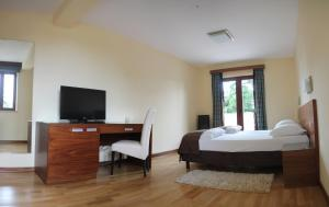 Bed and breakfast Villa Dobravac, B&B (nocľahy s raňajkami)  Rovinj - big - 7