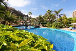 Foto del hotel  Bahía Príncipe San Felipe