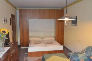 Casa Alpina Relax, Apartments  Saalbach Hinterglemm - big - 7