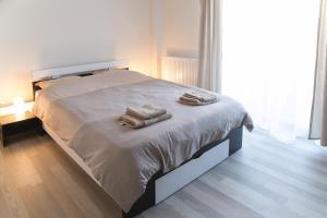 Hermann Apartments, Apartmanok  Nagyszeben - big - 27