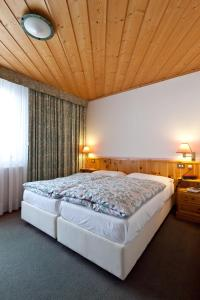 Hotel Haus Michaela, Hotels  Sappada - big - 5