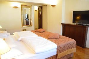 Radisson Blu Hotel Altstadt, Отели  Зальцбург - big - 5