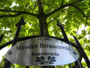 Hotel Kosmonauty Wrocław-Airport, Hotely  Vroclav - big - 44