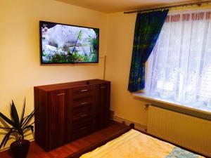 Haus Veni, Appartamenti  Bad Grund - big - 20