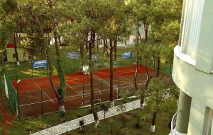 Andamati Hotel, Hotel  Grigoleti - big - 24