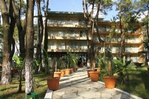 Andamati Hotel, Hotel  Grigoleti - big - 14