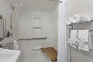 Queen Room- Disability Access - Walk-in Shower