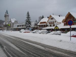 Apartment Dolni Namesti - Hotel - Rokytnice Nad Jizerou