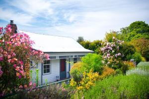 Fortuna Cottage, Venkovské domy  Daylesford - big - 11