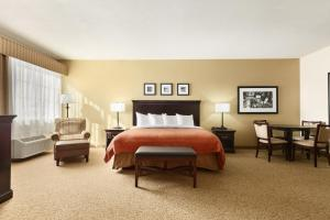 King Executive Suite Room