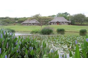 Ascot Bush Lodge, Bed and breakfasts  Pietermaritzburg - big - 15