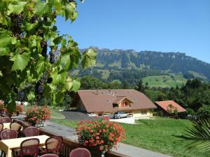 Hotel Rothorn, Hotely  Schwanden - big - 43