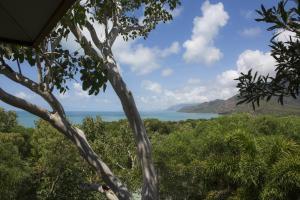 Thala Beach Nature Reserve, Port Douglas (10 of 81)
