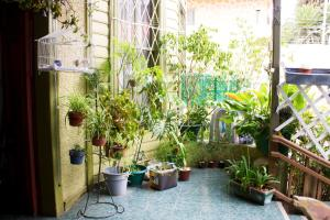 Hostal Residencia Blest Gana, Penziony – hostince  Viña del Mar - big - 25