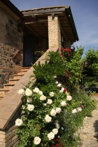 Locanda Della Quercia Calante, Venkovské domy  Castel Giorgio - big - 32