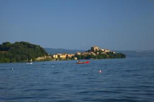 Locanda Della Quercia Calante, Case di campagna  Castel Giorgio - big - 45