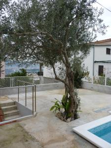 Apartment White Lady, Ferienwohnungen  Trogir - big - 4