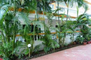 Silver Sands Sunshine - Angaara, Hotels  Candolim - big - 19