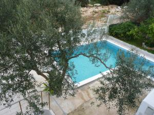 Apartment White Lady, Ferienwohnungen  Trogir - big - 28