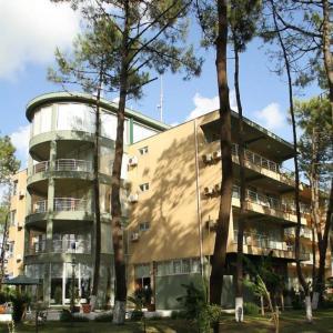 Andamati Hotel, Hotel  Grigoleti - big - 42