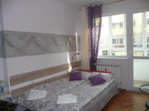 Studio Rositza, Appartamenti  Sofia - big - 1