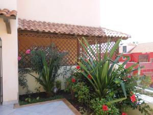 Sunrise Residence, Ferienwohnungen  Santa Maria - big - 34