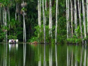 Inkaterra Reserva Amazonica (5 of 48)