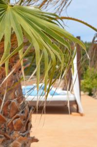 Es Pas Formentera Agroturismo, Country houses  Es Calo - big - 60