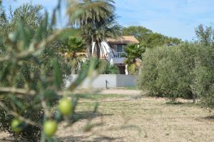 Es Pas Formentera Agroturismo, Venkovské domy  Es Calo - big - 136