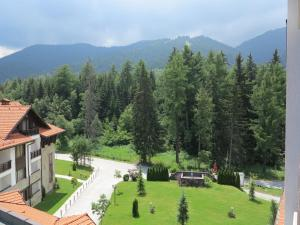 Borovets Holiday Apartments - Different Locations in Borovets, Apartments  Borovets - big - 78