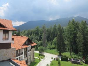 Borovets Holiday Apartments - Different Locations in Borovets, Apartments  Borovets - big - 77