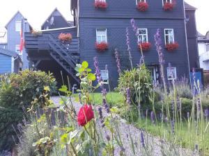 Ferienwohnung Bad Berleburg, Dovolenkové domy  Bad Berleburg - big - 3