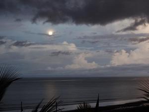 Posada del Mar, Отели типа «постель и завтрак»  Las Tablas - big - 25