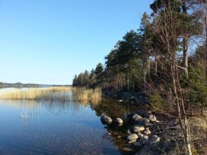 Hamgården Nature Resort Tiveden, Country houses  Tived - big - 3