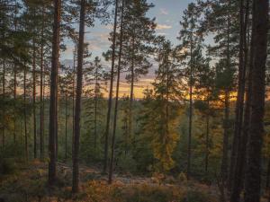Hamgården Nature Resort Tiveden, Country houses  Tived - big - 4