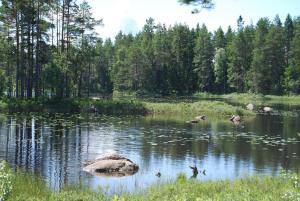 Hamgården Nature Resort Tiveden, Country houses  Tived - big - 5