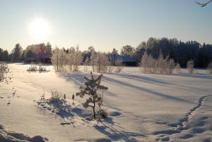 Hamgården Nature Resort Tiveden, Country houses  Tived - big - 6