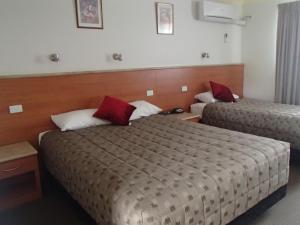 Scone Motor Inn & Apartments, Motels  Scone - big - 10