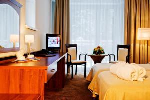 Hotel Krynica Conference & SPA, Hotels  Krynica Zdrój - big - 10