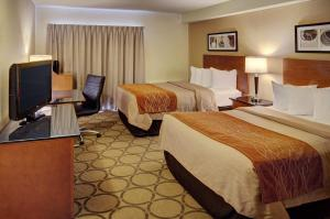 Deluxe Room with Two Double Beds - Ground Floor