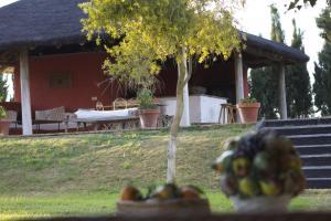 Hacienda La Indiana, Vendégházak  Los Palacios y Villafranca - big - 16