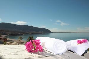 CostaBaja Resort & Spa (6 of 67)