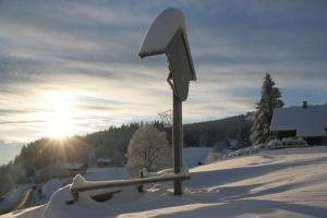 Bödele Alpenhotel, Hotels  Schwarzenberg im Bregenzerwald - big - 25