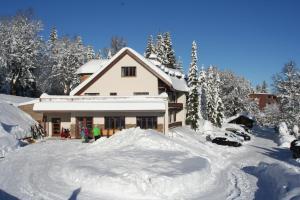 Bödele Alpenhotel, Szállodák  Schwarzenberg im Bregenzerwald - big - 24